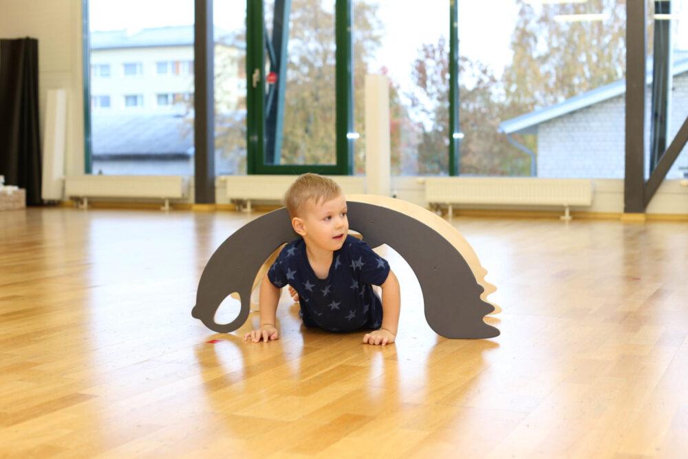 rocking toy and climbing toy birdie for toddlers - Schaukeltier und Kletterbogen Birdie für Kleinkinder